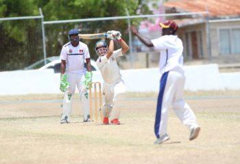 Jacob Parles Cricket